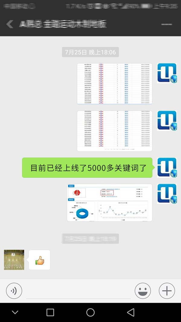 安徽金踏体育网络推广效果