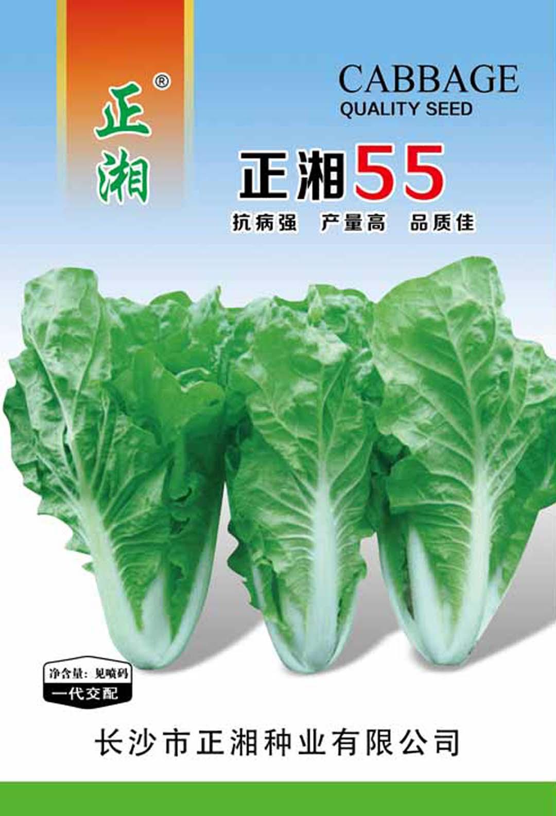 亚虎app网页版55白菜亚虎国际 唯一 官网