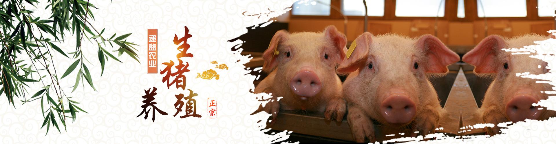 重庆递益农业开发有限公司