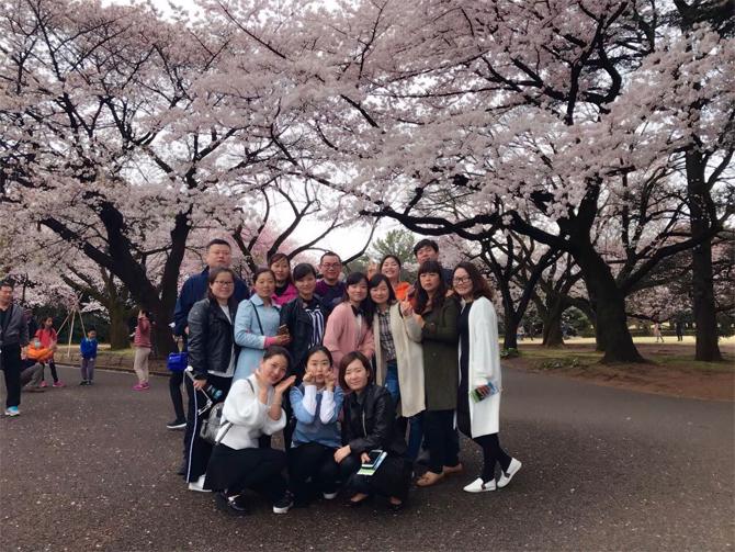 2017年日本之旅