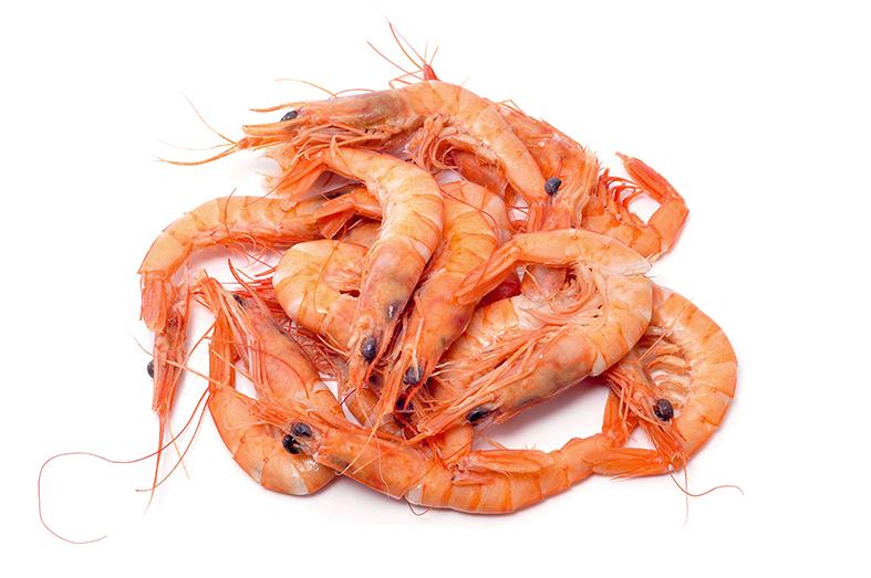 特色菜品 活海鲜配送 海捕虾 海捕虾 名称:海捕虾  更多推荐 > > 可