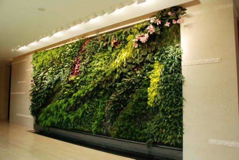 海口植物墙,海口垂直绿化,海口仿真植物墙