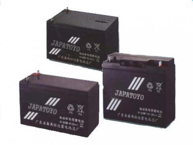 DZM系列电动车用蓄电池TOYO
